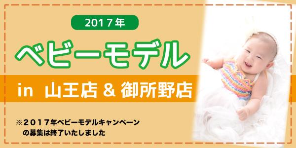 170428_babymo_akita