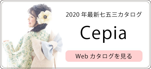 link_catalog_753web